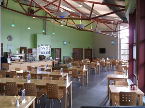 Picture of Natural World Cafe in Lincoln - tables and chairs in a green room.